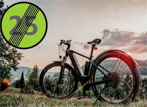 Tune your ebike for more fun